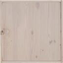 46,4x46,4x1,6cm, Tür mit Rückwand weiß